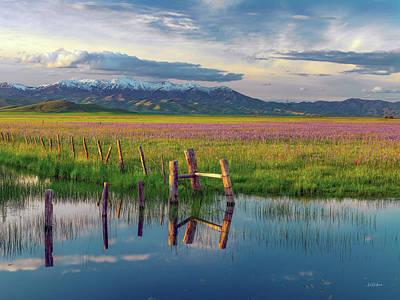Photograph - Camas Landscape by Leland D Howard
