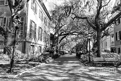 Photograph - Campus Walk At The College Of Charleston by John Rizzuto