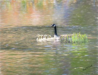 Digital Art - Canada Goose And Six Goslings Swimming Together. by Rusty R Smith