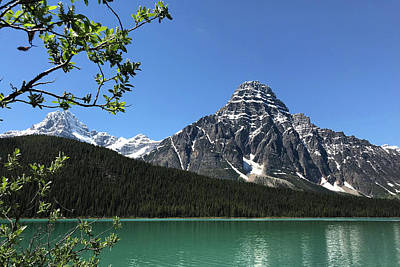 Photograph - Canadian Delight by Images Unlimited