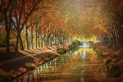Comic Character Paintings - Canal de Brienne Toulouse France in Autumn  by Carol Japp
