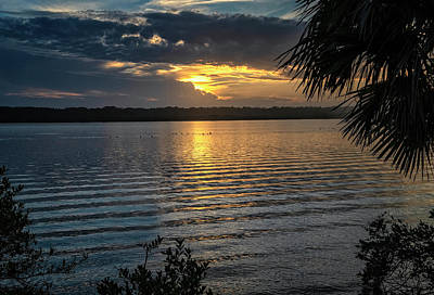 Photograph - Canaveral Park Sunset by Tom Singleton