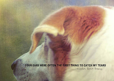 Photograph - Canine Salvation Quote by JAMART Photography