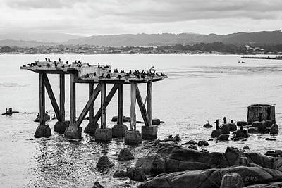 Photograph - Cannery Row Monterey Ca I Bw by David Gordon