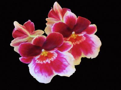 Mixed Media - Canvas Violets by Dennis Buckman