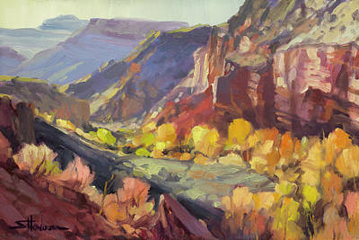 Beach House Throw Pillows - Canyon at Capitol Reef by Steve Henderson
