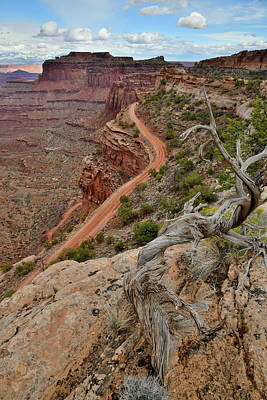 Nighttime Street Photography - Canyonlands NP Shafer Canyon and Trail by Ray Mathis