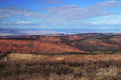 Photograph - Canyons Of Utah by Marcia Lee Jones