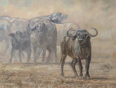 Painting - Cape Buffalo, Zambia by David Stribbling