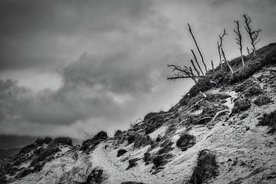 Photograph - Cape Kiwanda Sand Dune - Oregon by Stuart Litoff