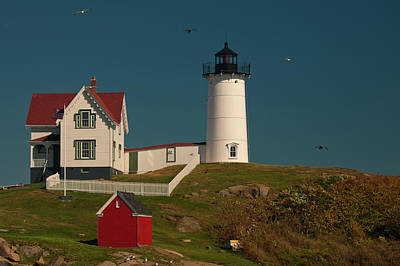 Photograph - Cape Neddick - Nubble Light by Paul Mangold