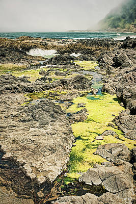 Photograph - Cape Perpetua Tidal Pool #2 - Oregon by Stuart Litoff