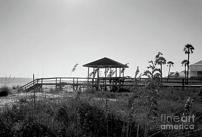 Sea Wall Art - Photograph - Cape San Blas by Megan Cohen