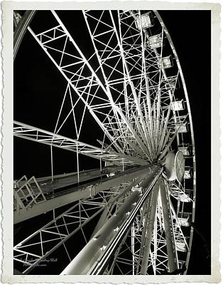 Animals Royalty-Free and Rights-Managed Images - Cape Town Wheel by Jennifer Wheatley Wolf