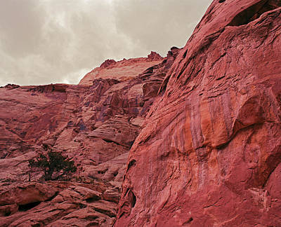 Photograph - Capitol Reef Grand Wash #2 by Tom Daniel