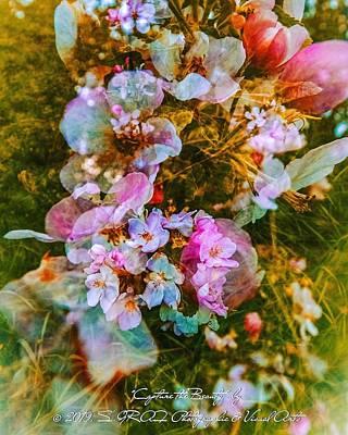 Digital Art - Capture The Beauty #01 by Sven Graf