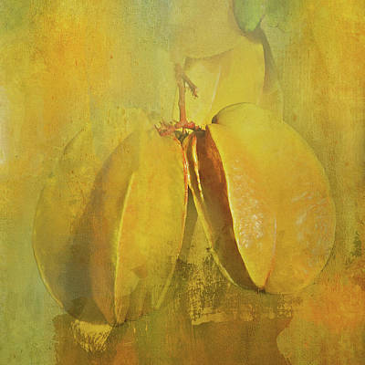 Photograph - Carambola Star Fruit by HH Photography of Florida