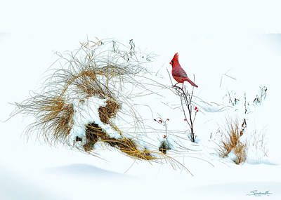 Digital Art - Cardinal Angel In The Snow by Spadecaller