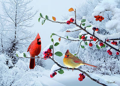 Digital Art - Cardinals In The Snow by Spadecaller
