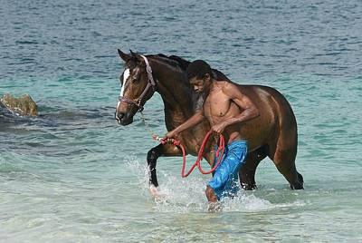 Photograph - Caribbean Swim 2 by Fraida Gutovich