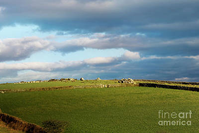 Photograph - Carnmenellis Landscape by Terri Waters
