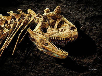 Photograph - Carnotaurus Skull 2 by Weston Westmoreland