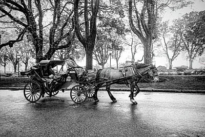 Photograph - Carriage Ride In Black And White Series 0610 by Carlos Diaz