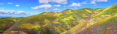 Photograph - Carrizo Plain Superbloom Panorama 2017 by Lynn Bauer