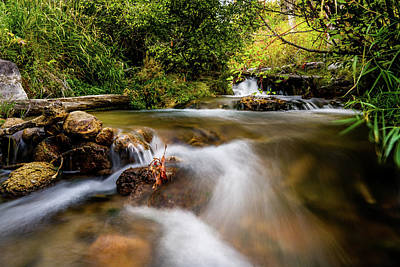 Photograph - Cascades On The Provo Deer Creek by TL Mair