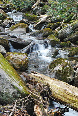 Photograph - Cascading Mountain Stream by Phil Perkins