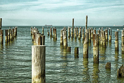 Photograph - Casino Pilings At Cape Charles Virginia by Bill Swartwout Fine Art Photography