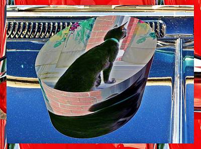 Animals Royalty-Free and Rights-Managed Images - Cat as a cylinder by Karl Rose