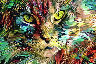 Digital Art - Cat Color Blast by Peggy Collins
