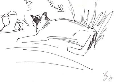 Drawing - Cat Lying Down Illustration by Mike Jory