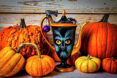 Photograph - Cat Pitcher With Pumpkins by Garry Gay