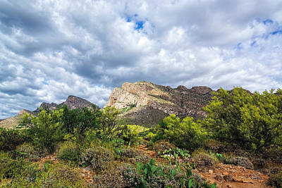 Mark Myhaver Rights Managed Images - Catalina Foothills In Spring h1934 Royalty-Free Image by Mark Myhaver