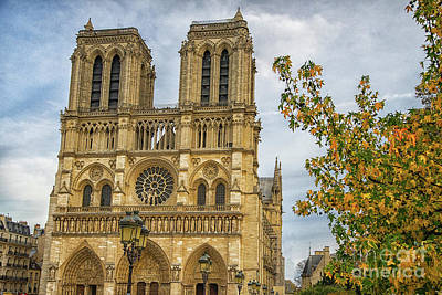 Photograph - Cathedral Notre-dame De Paris by Wayne Moran