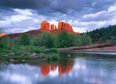 Arizona Photograph - Cathedral Rock Reflected In Oak Creek by Tim Fitzharris/ Minden Pictures