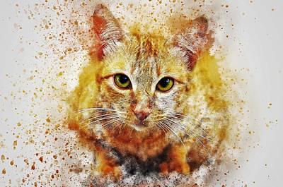 Watercolor Pet Portraits Painting - Cat's Eye by ArtMarketJapan