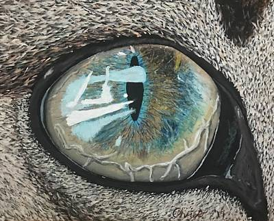 Blue Painting - Cat's Eye by Christo Botha