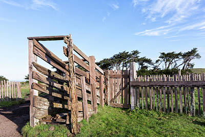 Photograph - Cattle Chute On The Coast  by Kathleen Bishop