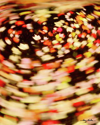 Photograph - Caught In A Spinning Pool by Harry Moulton