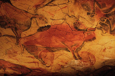 Photograph - Cave Painting 7 by Andrew Fare