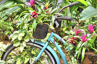 Photograph - Cayman Transportation by JAMART Photography