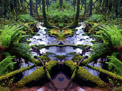 Photograph - Cedar Creek Mirrored Art by Ben Upham III