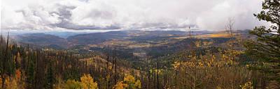 Photograph - Cedar Mountain Top  by Michael Monahan
