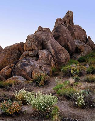 Photograph - Cello Case Rocks by Paul Breitkreuz