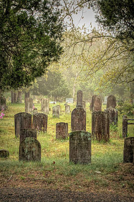 Photograph - Cemetery In The Pines by Kristia Adams