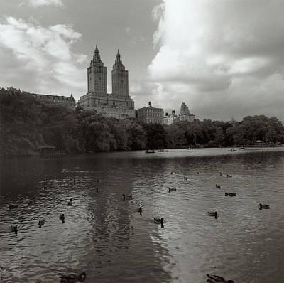 Organism Wall Art - Photograph - Central Park Lake by Henri Silberman