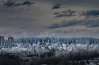 Photograph - Central Park Winter by Juan Contreras
